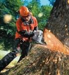 Bosbouwkleding